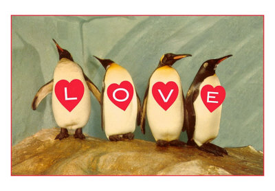 Four Emperor Penguins, LOVE Art Print
